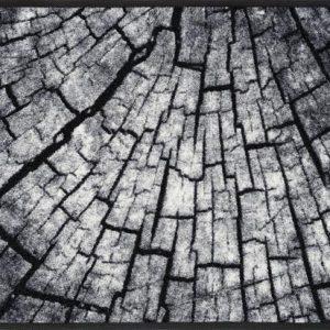 Timber-dormatte-foto